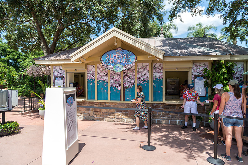 almond orchard wdwtoday
